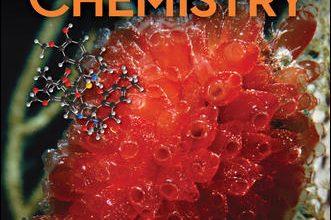 Organic Chemistry 6th Edition